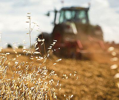 Farm & Ranch Lending